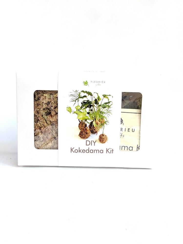 a kit containing everything needed to make a kokedama. Plant not included.