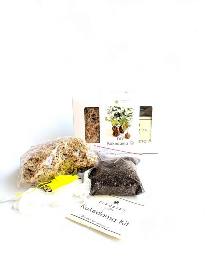 Kokedama kit containing sphagnum moss, soil, instructions, twine and gloves.