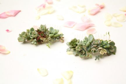 Two hair combs decorated with living succulents.