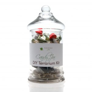 DIY terrarium kit by Fleurieu Gifts