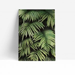Fern Wall Print