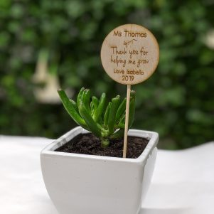 Personalised 'Thank you Teacher' plant spike and succulent in ceramic pot