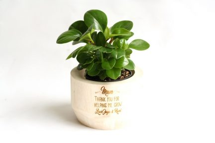 Personalised timber plant pot for Mother's Day.