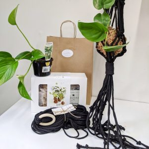 Kokema kit and Macrame hanger kit