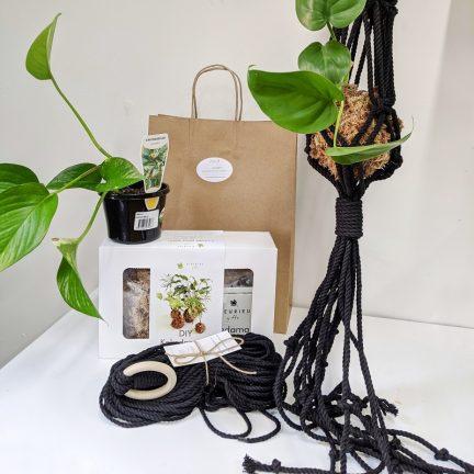 Kokema kit and Macrame hanger kit