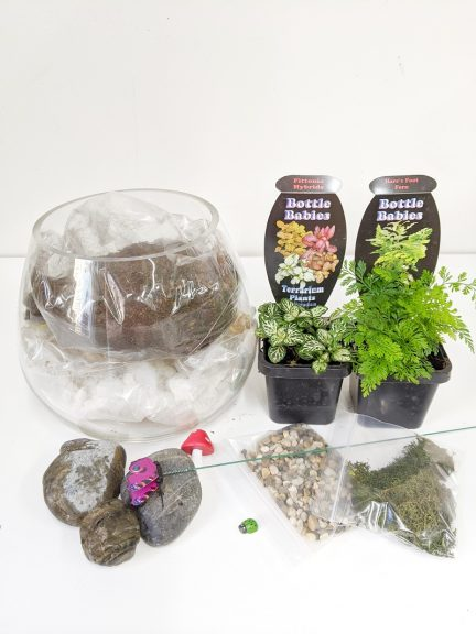 Take home terrarium kit and all its elements