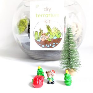 Christmas extras with a DIY terrarium kit.