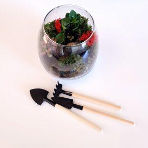 Mini terrarium tools