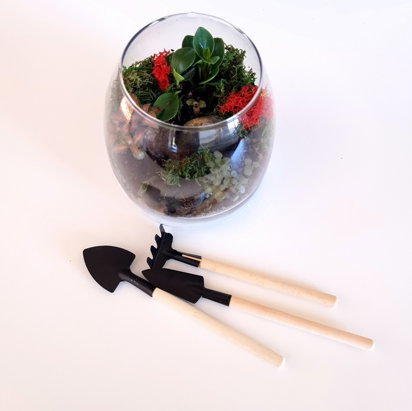 Mini terrarium tools
