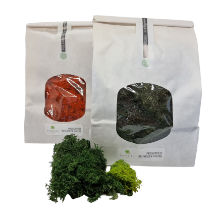 preserved moss 200g bags
